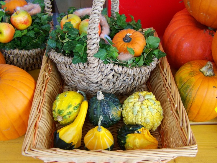 colorful-pumpkins-959509_960_720