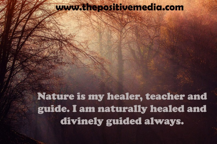 naturehealer