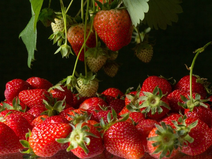 strawberries-764708_960_720