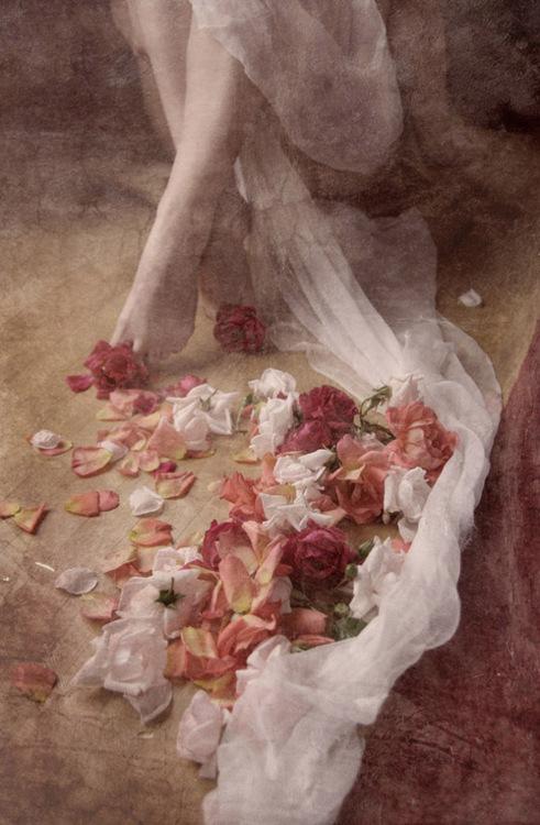 rose-cafleurebon