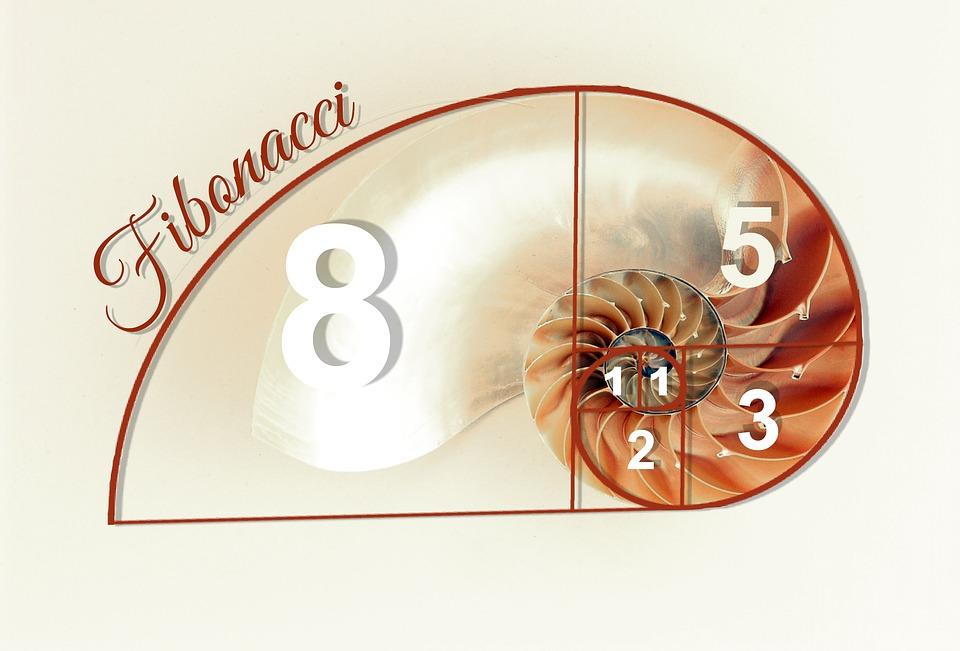 fibonacci-1079783_960_720.jpg