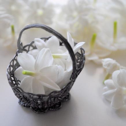jasmines