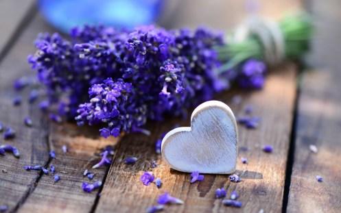 lavender-bouquet