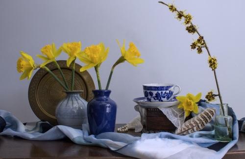 Still-life_Daffodils_482234.jpg