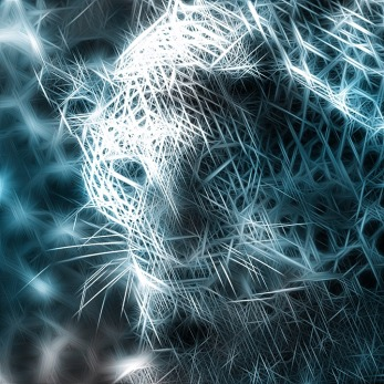 leopard-1518673_960_720