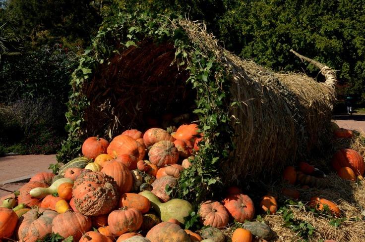 pumpkins-1004417_960_720 (2).jpg