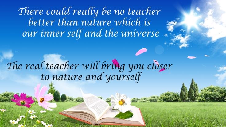 book nature.jpg