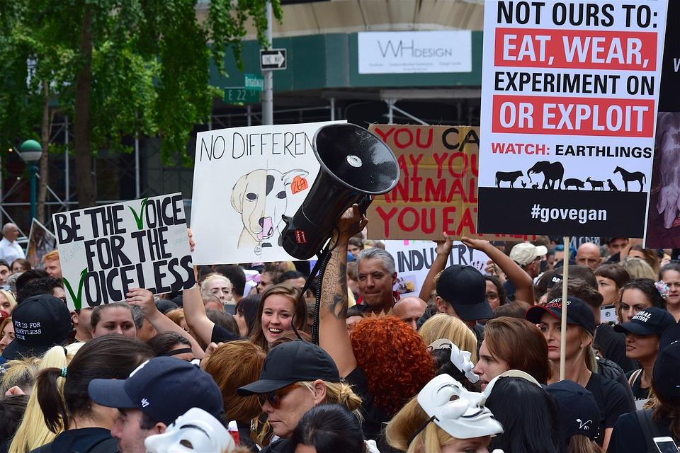 vegan rally