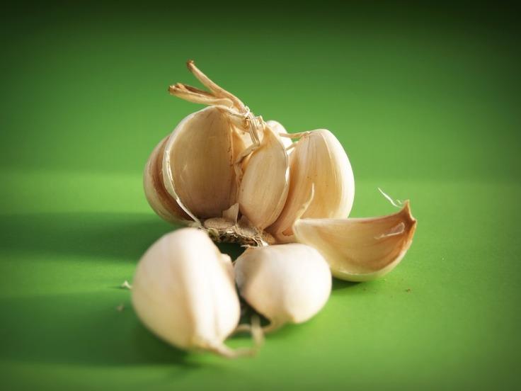 garlic-1549453_960_720