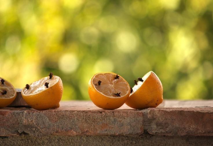lemons-1330740_960_720