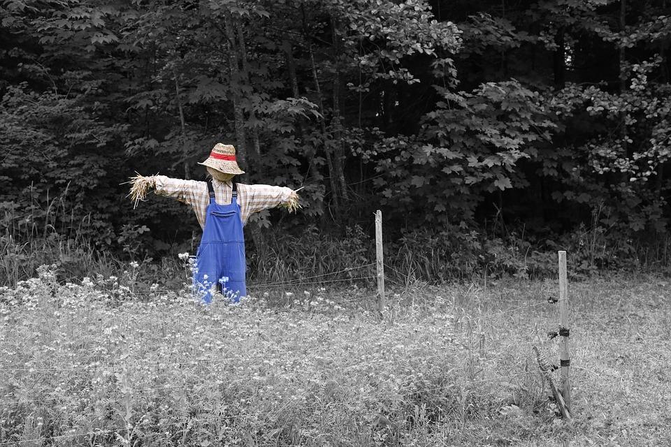 scarecrow-670720_960_720